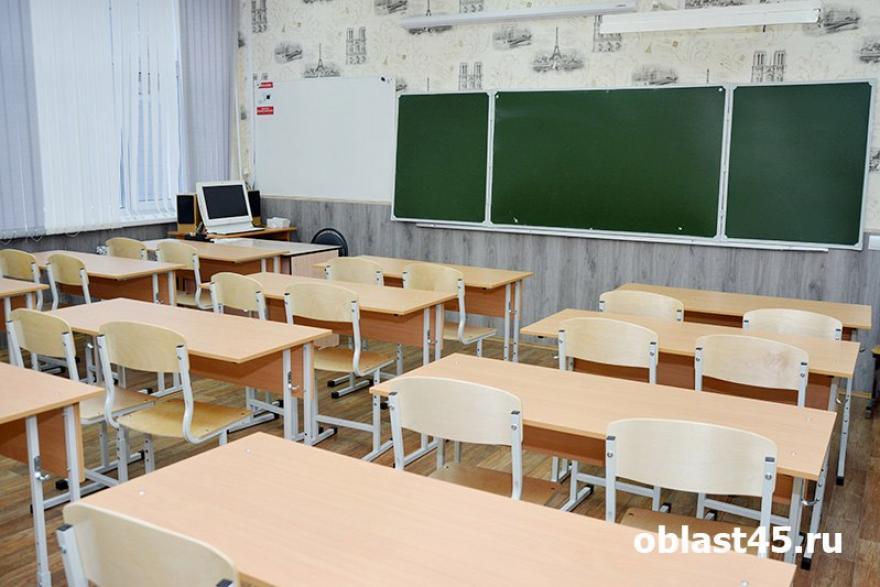 В Курганской области приняли решение отменить занятия в школах